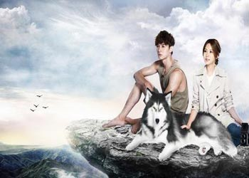 Prince of Wolf [TW-Drama] (2016)
