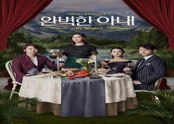 Perfect Wife [K-Drama] (2017)