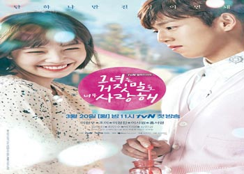 The Liar and His Lover [K-Drama] (2017)
