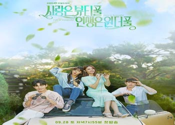 Beautiful Love, Wonderful Life [K-Drama] (2019)
